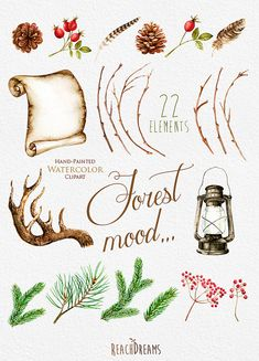 Etsy の Watercolor clipart. Forest mood. Hand Drawn by ReachDreams