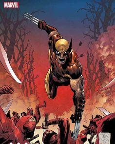 Marvel Comics Art, Marvel Fan, Marvel Avengers, Comic Book Heroes, Comic Books Art, Comic Art, Marvel Comic Character, Marvel Characters, Wolverine Pictures