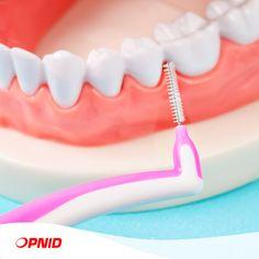 Vos espaces interdentaires sont-ils trop grands ? Dans ce cas, au lieu d'utiliser le fil dentaire, vous pouvez choisir la brossette. Il existe différentes tailles, vous pouvez donc choisir celle qui vous convient le mieux.