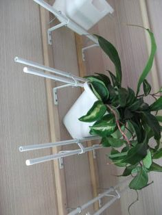 Tv Stand Designs, Plant Holders, Plant Hanger, Indoor Plants, Flower Arrangements, Patio, Interior Design, Home Decor, Gardening