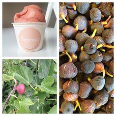 fig ice cream! Vegan Desserts, Icecream, Fig, Sprinkles, Stuffed Mushrooms, Vegetables, Cake, Recipes, Stuff Mushrooms