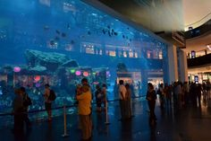 #Dubai #Shopping Mall see more - http://www.joy-travels.com/city/dubai