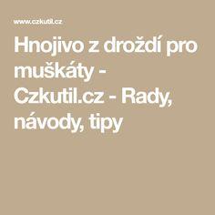 Hnojivo z droždí pro muškáty - Czkutil.cz - Rady, návody, tipy