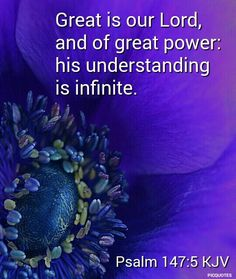 Psalm 147:5 KJV