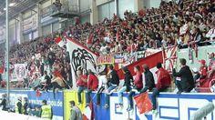 Bundesliga 2014/15 SC Paderborn - 1.FC Köln