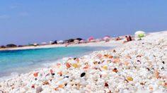 ITALIA SARDEGNA penisola dei sinis spiaggia chicco di riso