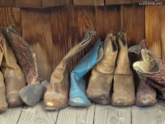 Stylish cowgirl boots for the modern women of today. It's here now cowgirls boot or cheap cowgirl boots. Go to the web above simply click the grey bar for additional info --- Awesome cowboy girl boots Country Strong, Country Life, Country Girls, Country Living, Country Music, Country Style, Country Singers, Country Sayings, Country Lyrics