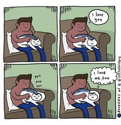 Reasons why cats are both simultaneously awesome and assholes