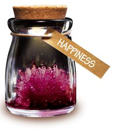 DIY Growing Crystal Wish Flower - SuperSmartChoices - 11 Wine Bottle Crafts, Mason Jar Crafts, Mason Jar Diy, Giveaways, Borax Crystals, Diy Crystals, Growing Crystals, Do It Yourself Crafts, Cool Diy Projects