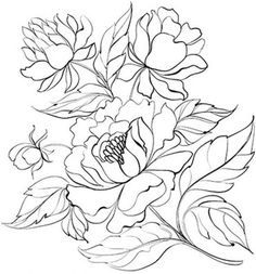 Excellent Free of Charge Peony disegno Thoughts The peony is actually outrageously stunning in bloom through planting season for you to summer—w Flower Coloring Pages, Colouring Pages, Coloring Books, Ink Painting, Fabric Painting, Plant Drawing, Painting Patterns, Colorful Pictures, Pattern Art