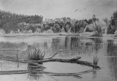 How to draw reflective water — online art lessons Water Sketch, Water Drawing, Water Art, Landscape Drawings, Cool Landscapes, Drawing Lessons, Art Lessons, Miami Beach, Pencil Drawings