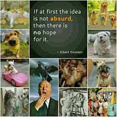 If at first the idea is not absurd, then there is no hope for it - Albert Einstein