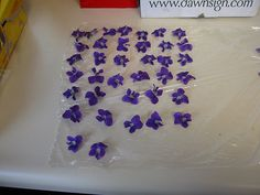 How to Make Candied Violets -- via wikiHow.com. Absolutely doing this today or tomorrow. #food #violets #recipe