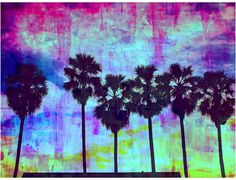 Palm Valley Palm Valley Dawn Canvas Print, 60x80cm