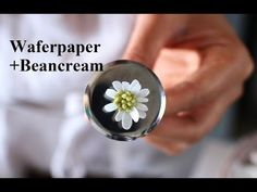 Buttercream Flowers Tutorial, Frosting Flowers, Buttercream Flower Cake, Wafer Paper Flowers, Piping Icing, Cake Decorating Techniques, Baking Tips, Flower Tutorial, Cookie Decorating