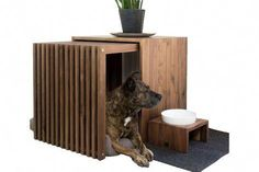 Foto Indoor-Hundehütte Stockholm The Effective Pictures We Offer You About luxury dog kennel pet hot