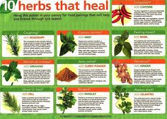 This is an amazing poster that shows how you can benefit from different natural herbs when you have different health issues. More interestingly, you can see how to pair them with other foods to increase their effect. Most of these herbs have been used for centuries in ancient medicines and proven to be effective.