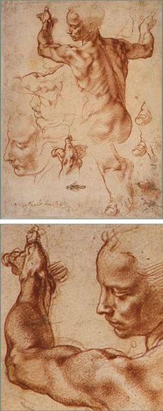 Michelangelo   studies for the Libyan Sibyl on the Sistine Chapel ceiling: