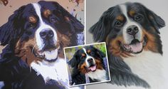 Bernese Mountain Dog Portraits - Same reference photo portrayed in two different mediums - coloured pencil and acrylic paint.