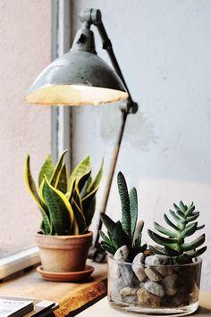 La doble función de las lámparas de sobremesa | Etxekodeco
