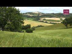 Biologico e sostenibile, la pasta della cooperativa agricola Girolomoni. Isola del Piano, Pesaro Urbino. Scopri le storie dei produttori di #SolidaleItaliano nei reportage realizzati da Aldo Pavan