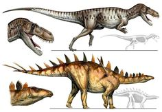 Davide Bonadonna : davidebonadonna.it | Torvosaurus and Miragaia