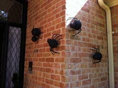 Halloween Outdoor Spiders