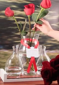 Filling the Rose Ceremony Vase. . .but how to decide who to give roses to and, by doing so, who to omit! Accck!