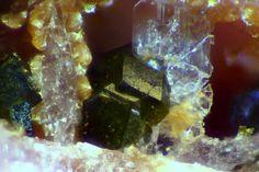 Goldmanite, Ca3(V,Al,Fe+++)2(SiO4)3, Valgraveglia Mine, Reppia, Graveglia Valley, Ne, Genova Province, Liguria, Italy. Fov 0.5 mm. Nice Goldmanite Crystal from type lobality. Collection Jean-René Legris - Photograph Jean-Pierre Barral.