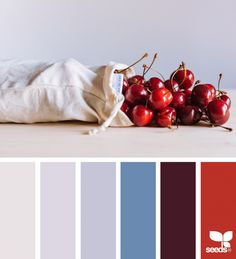 Fresh Hues | Design Seeds