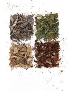 biomass (mary jo hoffman)