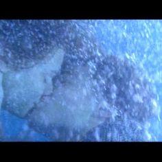 Romeo and Juliet. Leonardo DiCaprio.