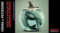 To prevent the reopening of the Rimini dolphinarium. http://www.change.org/it/petizioni/per-impedire-la-riapertura-del-delfinario-di-rimini #SeaShepherd #defendconserveprotect