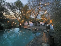 Twinkle lights and an infinity pool, all in the jungle - Singita Sabi Sand, Kruger National Park, South Africa
