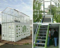 20 foot aquaponic garden