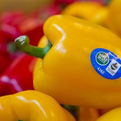 Are you buying #FairTrade #produce yet?  Shape Magazine explains why you should.