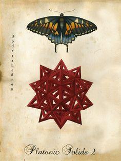 Lindsey Carr - Platonic Solids / Sacred Geometry <3