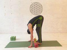 Yoga Übung Hamstrings
