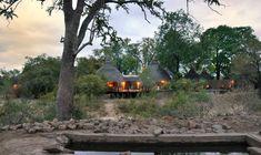 Hoyo Hoyo Safari Lodge | Specials 4 Africa