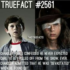 The walking dead Chandler Riggs Walking Dead Facts, Walking Dead Season 8, Walking Dead Funny, Fear The Walking Dead, Chandler Riggs, Talking To The Dead, Carl Grimes, Dead Inside, Stuff And Thangs
