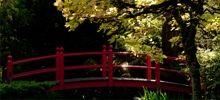 Japanese Gardens at the Irish National Stud, Kildare