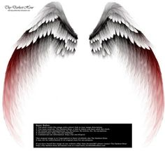 Arch Angel Wings - Red Tinge by Thy-Darkest-Hour on DeviantArt Arch Angel Wings - Red Tinge by Thy-Darkest-Hour on DeviantArt<br> Red Angel Wings, Angel Wings Drawing, Demon Wings, Tattoo Son, Back Tattoo, Tattoo Wings, Facebook Featured Photos, Angel Clipart, White Wings