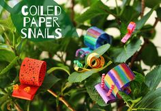 I don't really loveto find these little critters in my garden, but I'll make an exception for these colorful paper snails. With a few basic supplies, and a little coiling technique, you can make a whole family of snails in... Continue Reading →