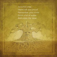 Advice from a tree... Zitat Quote Life Hapiness Glück Entspannung Zufriedenheit glücklich sein www.wonnewerk.de