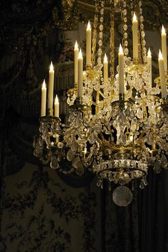 Radiant at Versailles