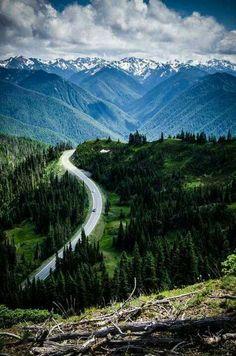 Hurricane Ridge, Olympic National Forest, Washington State.