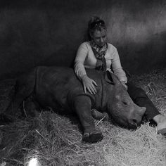 Orphaned baby Rino can't sleep alone-After seeing mother killed by poachers.