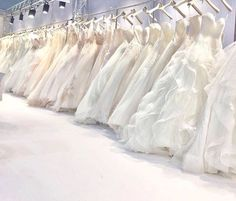 """Gli #espositori di #sposidea2017 |@whiteladysposa | #weddingday #wedding #weddingdress #car #love #kiss #luxury #location #milano #vapriodadda #vsco #vscowedding #italy #whiteladysposa #villacastelbarco #abitosumisura #weddingphotography | 🌐 fierasposidea.it"" by @sposidea_mostra_per_gli_sposi. #eventplanner #weddingdesign #невеста #brides #свадьба #junebugweddings #greenweddingshoes #destinationweddingphotographer #dugunfotografcisi #stylemepretty #weddinginspo #weddingdecor #weddingstyle…"
