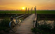 Araminta Holiday - bicycle wallpaper pictures free - 2560 x 1600 px