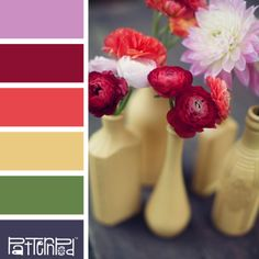 Brightly Bloomed #patternpod #patternpodcolor #color #colorpalettes